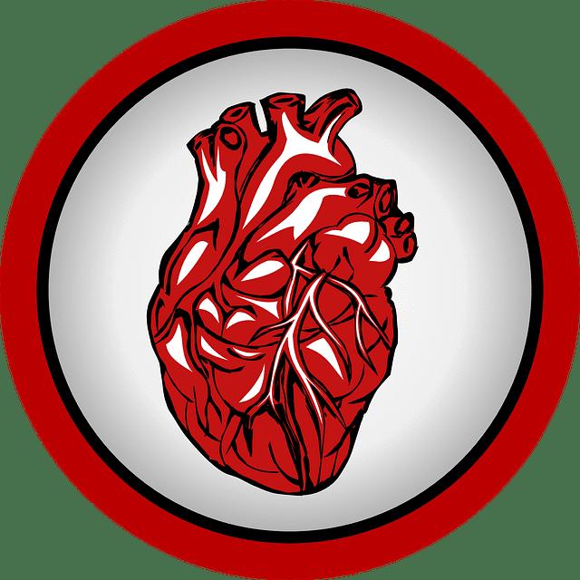 MRI לב פרטי